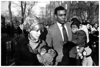 garry-winogrand-central-park-zoo-new-york-city-1967