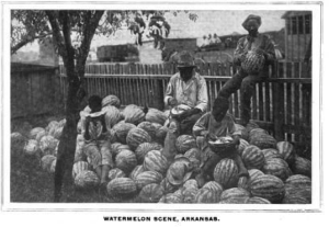"""Watermelon Scene, Arkansas,"" publish 1898, Unattributed"