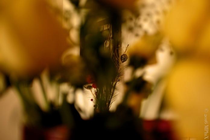 Golden Peacock Roses_MPHIX