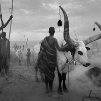 Photo of the Day: Sebastião Salgado