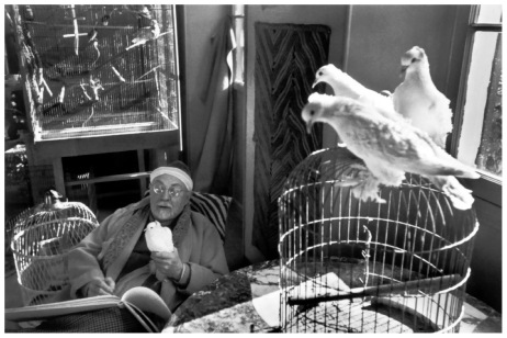 henri-cartier-bresson-henri-matisse-vence-france-1944
